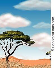 campo, albero, scena, deserto