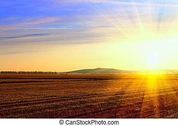 campo, amanhecer