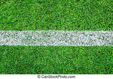 campo, blanco, futbol, raya verde