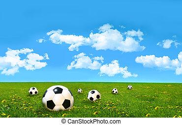 campo, bolas futebol, capim, alto