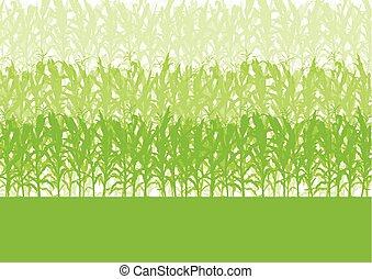 campo cereale, astratto, rurale, autunno, biomass, biofuel, vettore