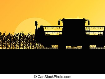 campo cereale, raccolta, con, mietitrebbiatrice, giallo, astratto, rurale, autunno, vettore