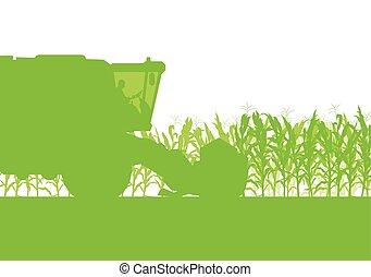 campo cereale, raccolta, con, mietitrebbiatrice, verde, ecologia, cibo organico, astratto, rurale, autunno, vettore