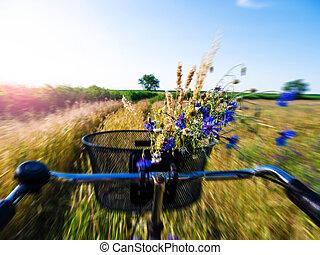 campo, ciclismo