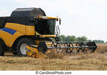 campo, combinar, trigo, segador