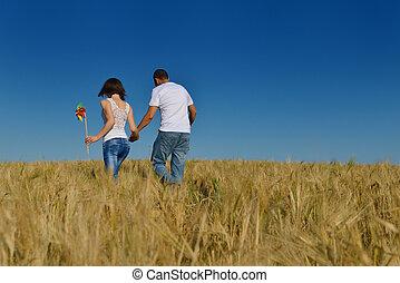 campo, coppia, frumento, felice