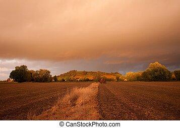 campo, cotswolds, cielo, temperamental