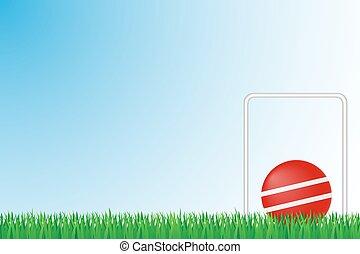 campo croquet, erba, vettore, illustrazione