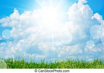 campo, de, capim, céu, com, nuvens