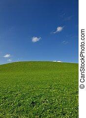 campo, de, gras, y azul, cielo
