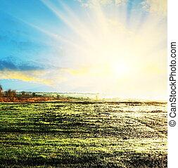 campo, en, salida del sol