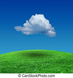 campo erba, con, cielo nuvoloso