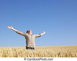 campo, extendido, trigo, brazos, hombre