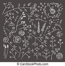 campo, fiori piante, decorazione, collezione, su, nero