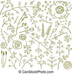 campo, fiori piante, decorazione, collezione