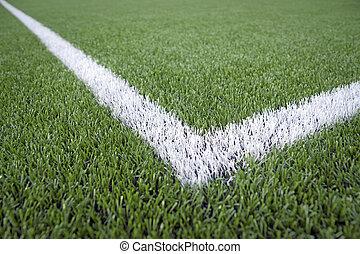 campo, futebol