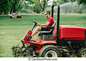 campo golfe, manutenção, equipamento, fairway, mower