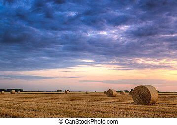 campo, granja, encima, heno, ocaso, balas