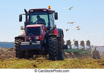 campo, granjero, arada, nuevo
