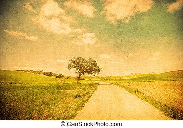 campo, imagem, grunge, estrada