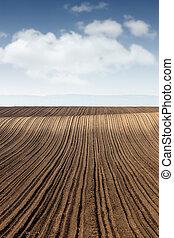campo, industria, agricultura, paisaje, arado