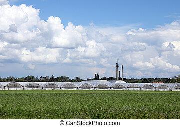 campo, industria, Agricultura, invernaderos