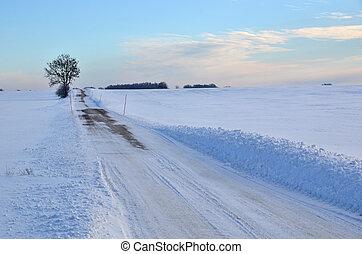 campo, inverno, estrada