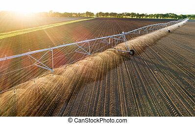 campo, irrigación, pivote, centro, sistema
