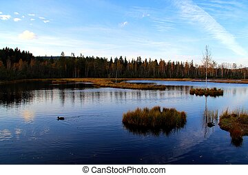 campo, lago