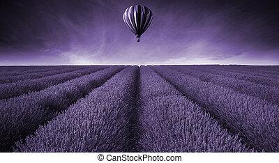 campo lavanda, verano, ocaso, paisaje, con, globo del aire caliente, toned