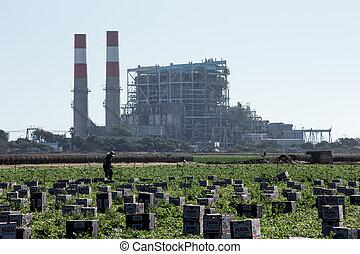 campo, lavoratore, scegliere, produrre, davanti, centrale elettrica