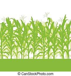 campo, maíz, vector, plano de fondo