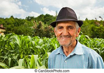 campo, milho, sênior, fundo, agricultor