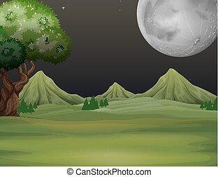 campo, noturna, verde, tempo