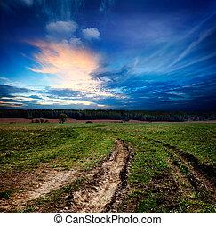 campo, paisagem, com, estrada sujeira