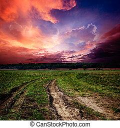 campo, paisaje, con, camino de tierra