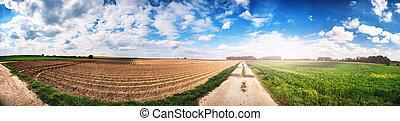 campo, panorâmico, agrícola, paisagem, arado
