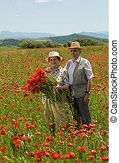 campo, par, flor, sênior