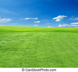 campo, pasto o césped, cielo, nublado