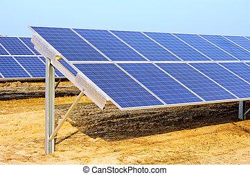 campo, planta, 06, solar