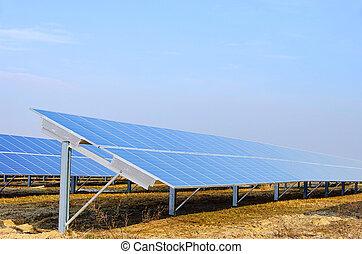 campo, planta, 07, solar
