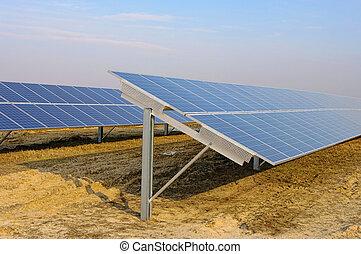 campo, planta, 08, solar