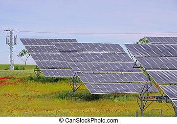 campo, planta, 09, solar