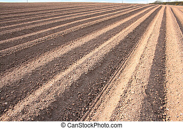 campo, ploughed, sulcos