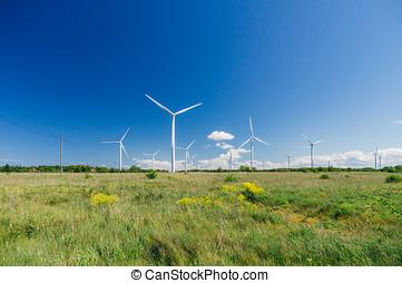 campo, pradera, con, enrolle turbinas, generar, electricidad