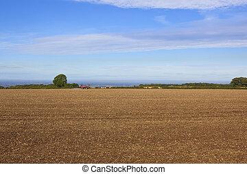 campo, rociador, cultivado