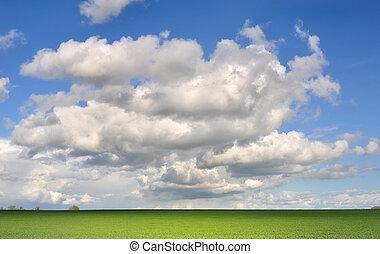 campo, sob, céu nublado