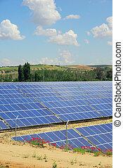 campo, solar, planta