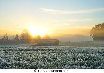 campo, sunrising