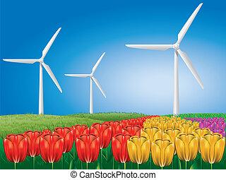 campo, turbina, vento, tulipa